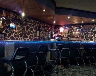 Proyecto de licencia de actividades Bar Musical en Camarles