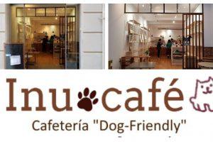 Licencia de actividad de un bar de mascotas en Barcelona